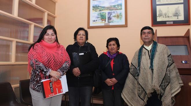 Proyecto Ruca Indígena de La Unión será presentado al FNDR