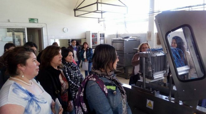 Se lanzan las bases para el Fondo de Emprendimiento Municipal destinado a usuarias del Programa Mujeres Jefas de Hogar Línea Independiente
